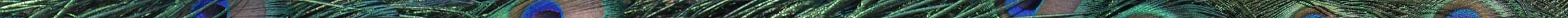 3_diensten-header-30px
